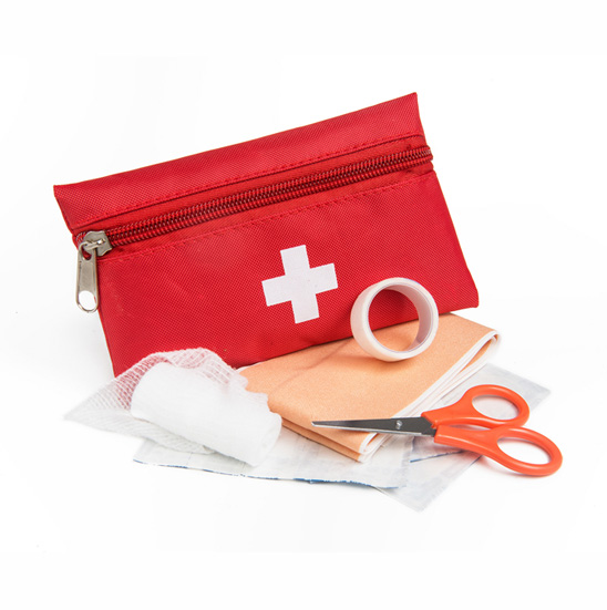 Travel Mini First Aid Kit